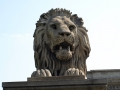 lionheads-szechenyi-chain-bridge