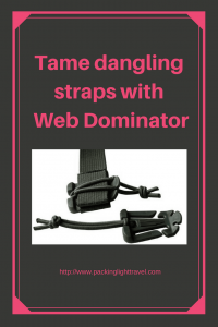 Tame-dangling-straps-with-Web-Dominator