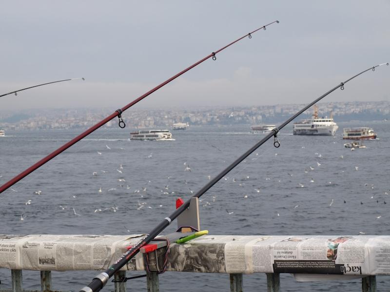 fishing-from-balata-bridge