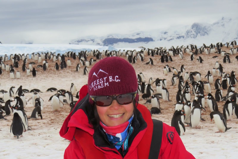 Antarctic adventure on MS Expedition