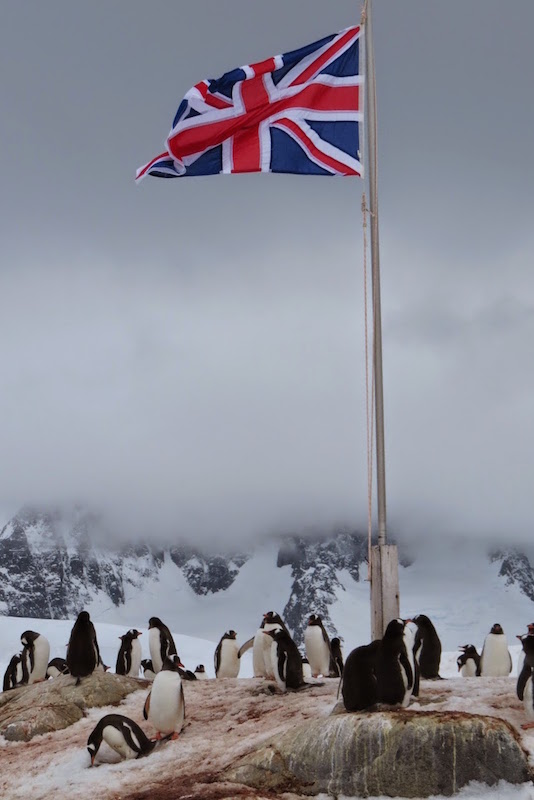 antarctica-port-lockroy