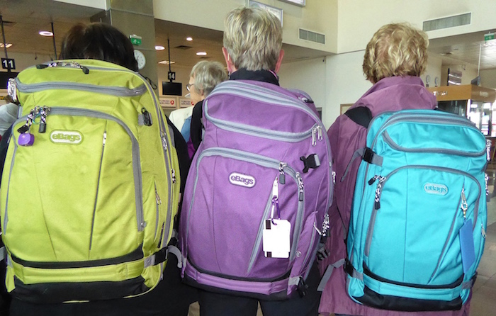 three-e-bags