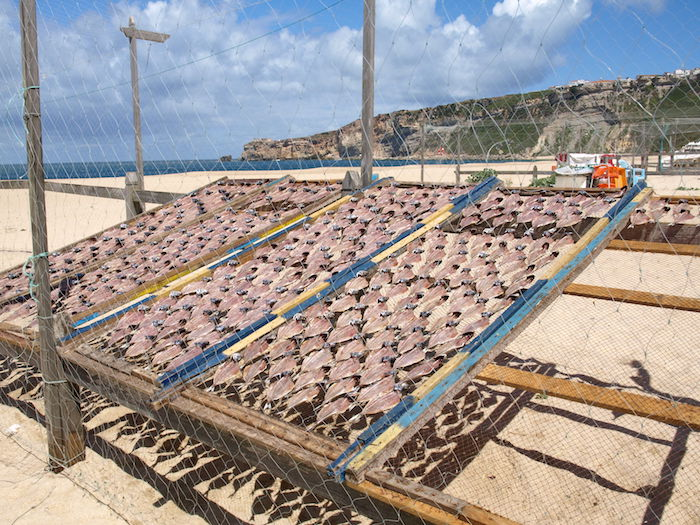 Nazare-Portugal-drying-fish