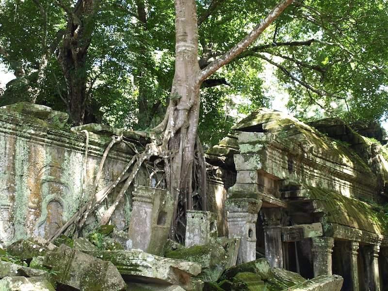 Cambodia-Ta_prohm-walls