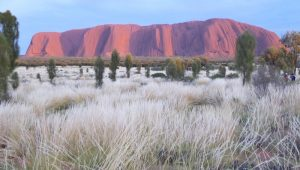 cycling-uluru-sunrise