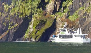 Milford-Sound-cruise-boats