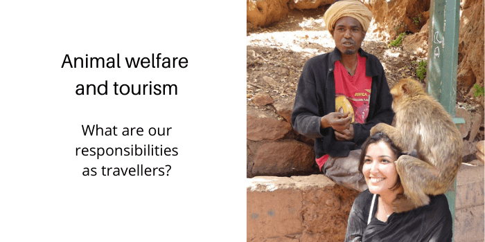 Ethical animal tourism: what are our responsibilities as travellers?